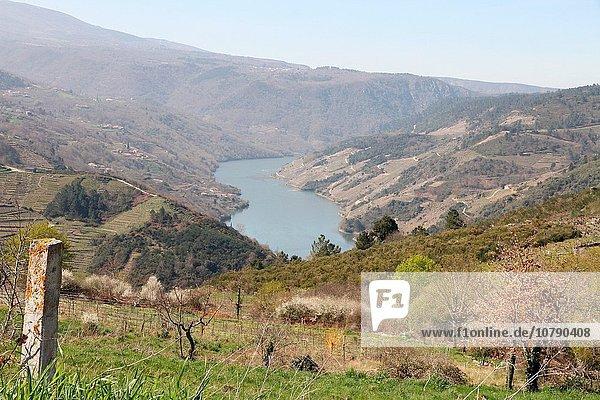 Berg Landschaft Fluss Galicien Spanien