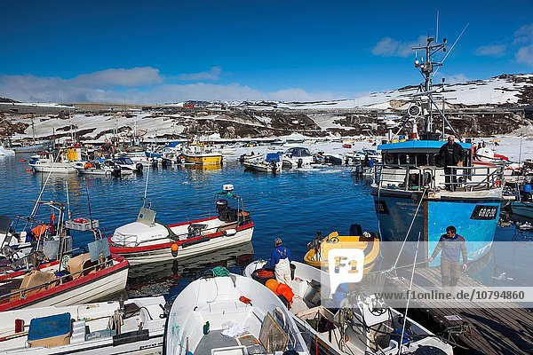 Greenland  Disko Bay  Ilulissat  town harbor  elevated view.