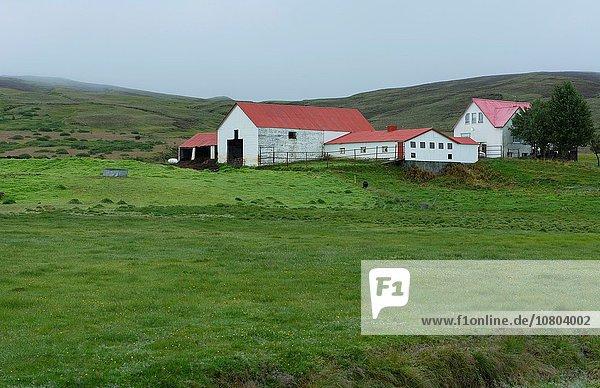Berg Wohnhaus Bauernhof Hof Höfe Wiese Landschaft Island Süden