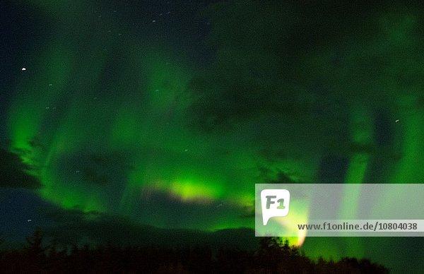 grün Tal Beleuchtung Licht Polarlicht Island