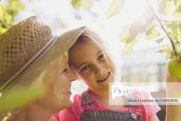 Portrait,lächeln,Enkeltochter,Großmutter,Garten,Sonnenlicht