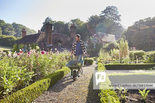 Mann schiebt Schubkarre im sonnigen Garten