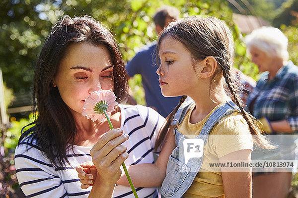 Mutter und Tochter riechen frische rosa Blume im sonnigen Garten