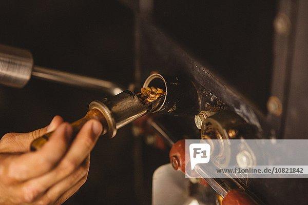 Mann gießt Kaffeebohnen in den Kaffeeröster  Nahaufnahme
