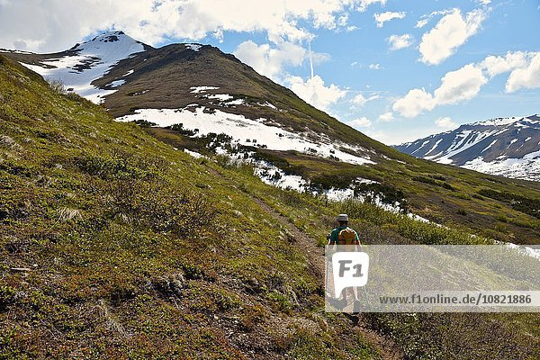 Bergsteigerin beim Bergsteigen  Rückansicht  Chugach State Park  Anchorage  Alaska  USA