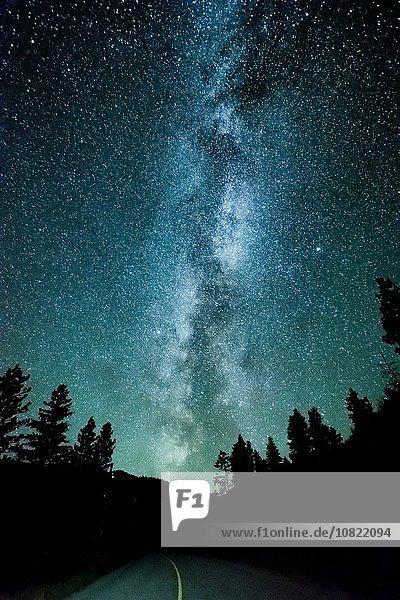 Forststraße und Milchstraße bei Nacht  Penticton  British Columbia  Kanada