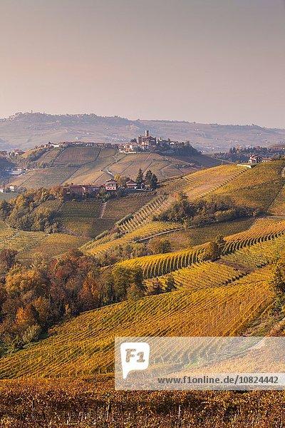 Landschaft mit herbstlichen Weinbergen und Hügeldorf  Langhe  Piemont  Italien