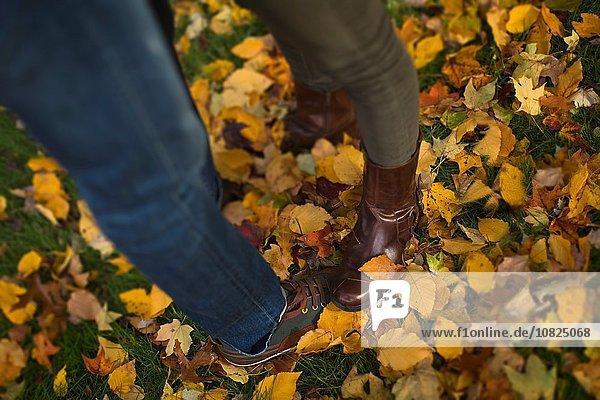 Beine und Füße eines erwachsenen Paares  das auf Herbstblättern steht.