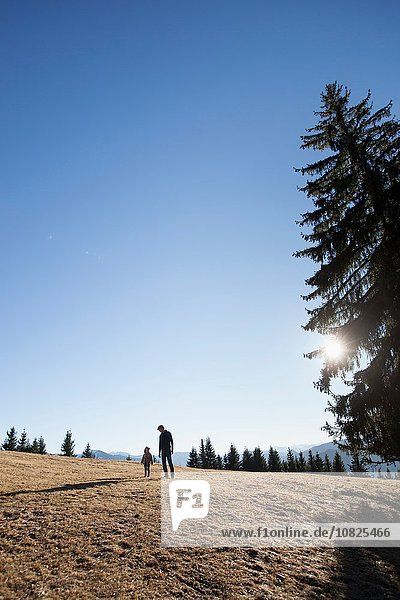 Mature man and toddler daughter walking on hill  Tegernsee  Bavaria  Germany
