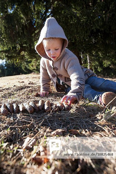 Female toddler playing with pine cones in forest