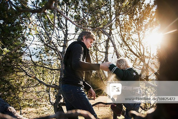 Mature man helping toddler daughter to climb forest tree
