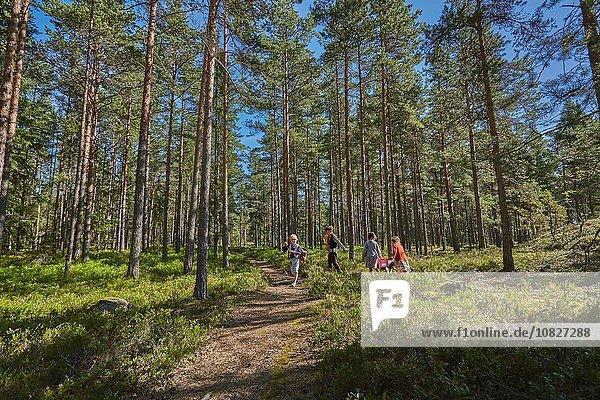 4 gehen Junge - Person Kleidung Wald Retro Mädchen
