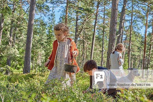 Junge - Person Kleidung Wald Retro Beerenobst Mädchen aufheben