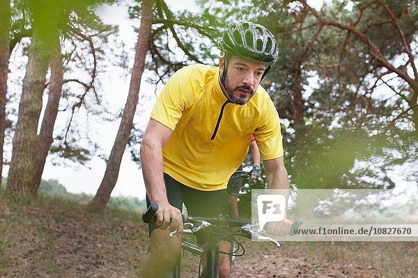 Männlicher Mountainbiker im Wald