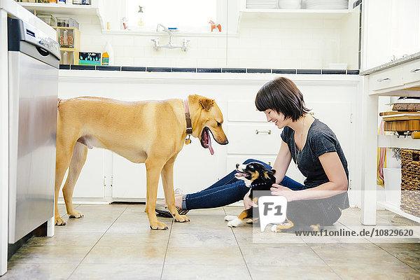Europäer Frau Küche Hund streicheln