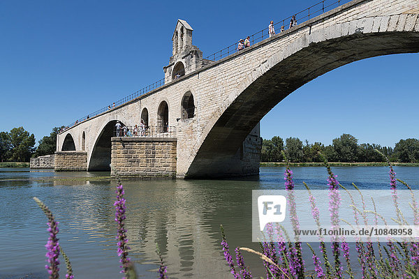 Pont St. Benezet  bridge on the River Rhone in the historic city of Avignon  UNESCO World Heritage Site  Vaucluse  Provence  France  Europe