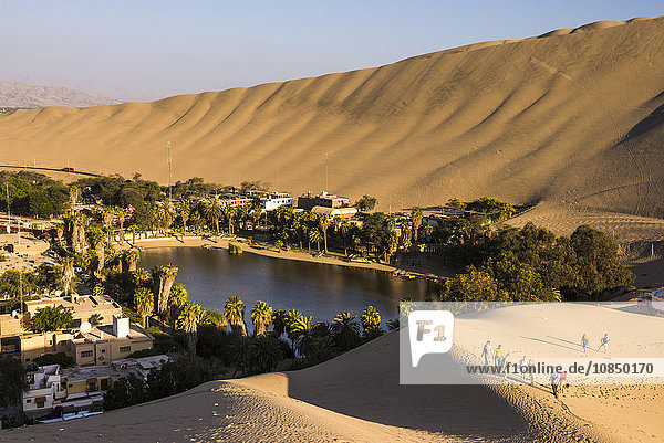 Tourists climbing sand dunes at sunset at Huacachina  a village in the desert  Ica Region  Peru  South America