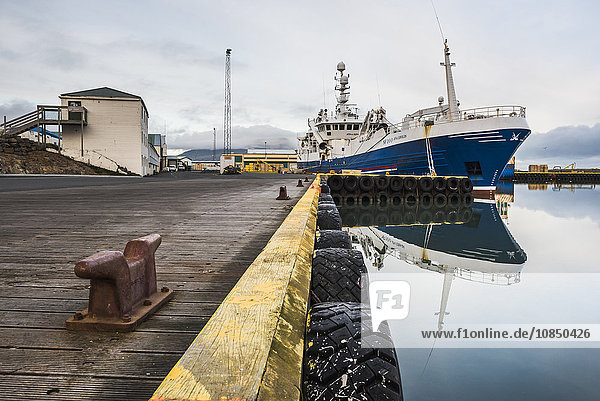 Fishing Harbour at Hofn  East Fjords Region (Austurland)  Iceland  Polar Regions