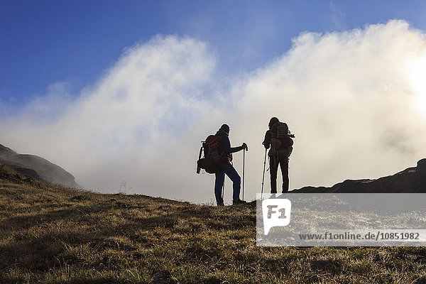 Hikers admire the landscape at dawn  Minor Valley  High Valtellina  Livigno  Lombardy  Italy  Europe