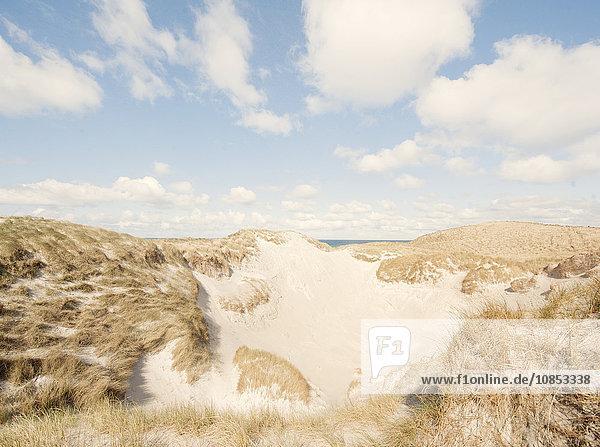Sand dunes  Isle of Barra  Hebrides  Scotland  United Kingdom  Europe