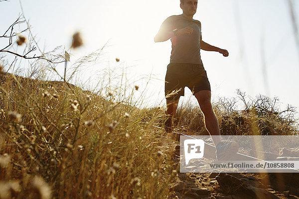Mann läuft sonnigen Pfad hinunter