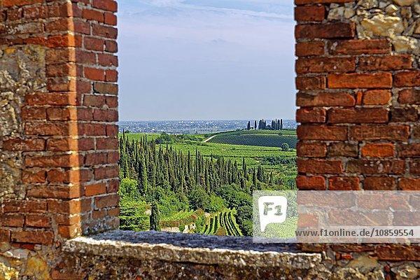 Castello Medievale  Soave  Venetien  Italien  Europa
