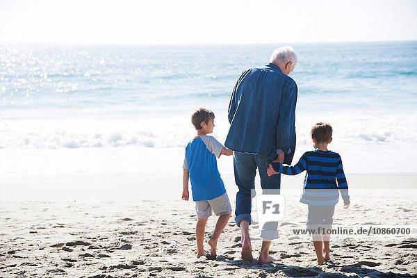 Grossvater mit zwei Enkeln  Strandspaziergang  Rückansicht