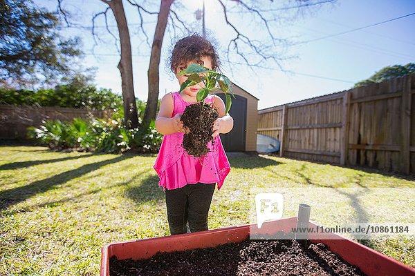 Junges Mädchen im Garten  hält Pflanze  bereit zum Einpflanzen