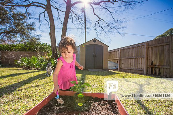 Young girl in garden  planting plant in tub  holding trowel