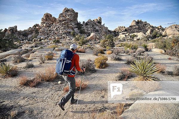 Hiker exploring Mojave Desert  Joshua Tree National Park  California
