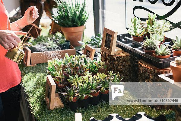 Florist watering plants in flower shop  mid section