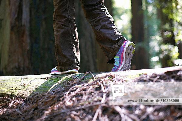 Gleichgewicht der Person beim Waldspaziergang
