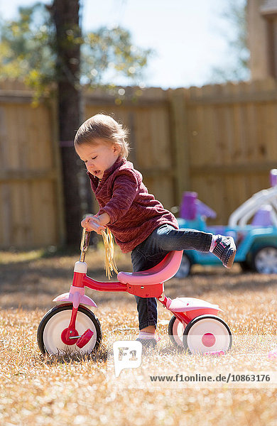 Female toddler playing on tricycle in garden