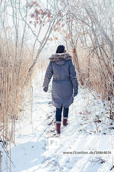 Ganzflächige Rückansicht einer Frau im Wintermantel beim Gang durch die verschneite Landschaft