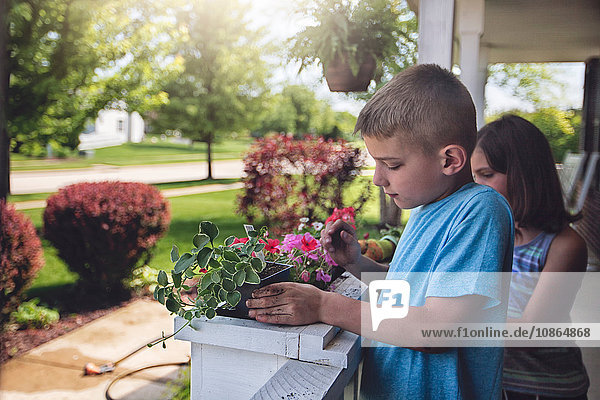 Boy and girl planting flowers in planter box