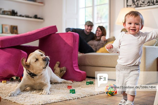 Babyjunge und Haushund spielen in einer Festung aus Sofakissen und schauen lächelnd in die Kamera