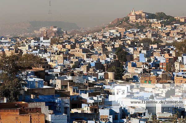 View of Jodhpur  referred to as the Sun City or the Blue City  Rajasthan  India
