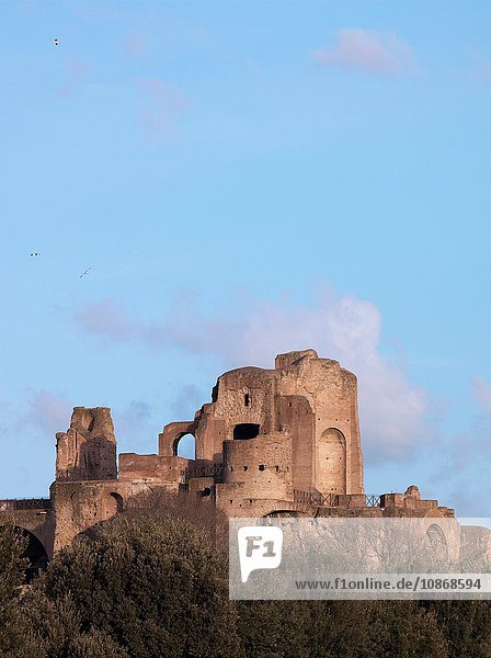 Ruins of The Roman Forum  Rome  Italy.