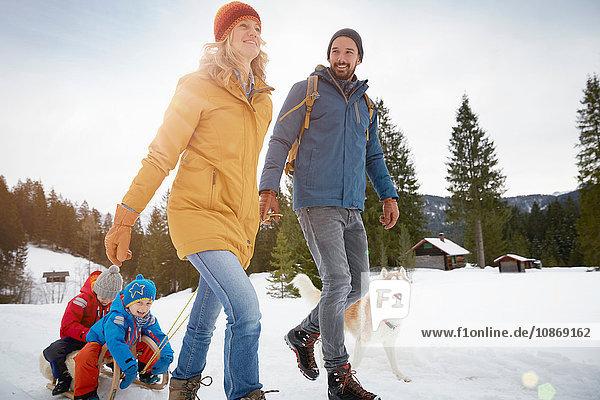 Parents pulling sons on toboggan in winter landscape  Elmau  Bavaria  Germany