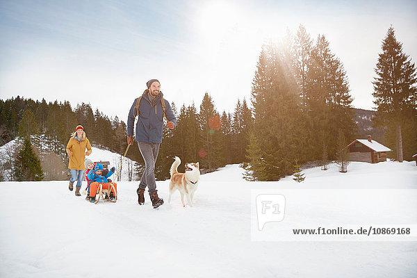 Parents pulling sons on toboggan in snow covered landscape  Elmau  Bavaria  Germany