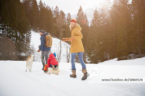 Rear view of parents pulling sons on toboggan in snow covered landscape  Elmau  Bavaria  Germany