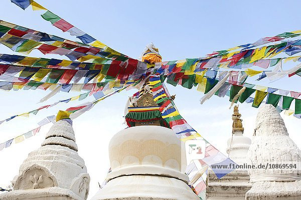 Stupa  Kloster Kopan  Kathmandu  Nepal
