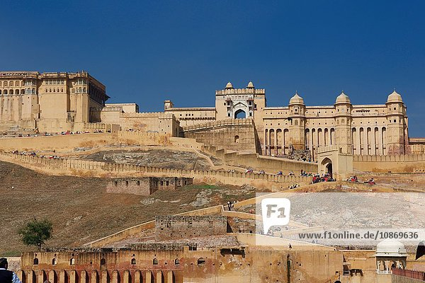 Amer Fort  Rajasthan  Indien