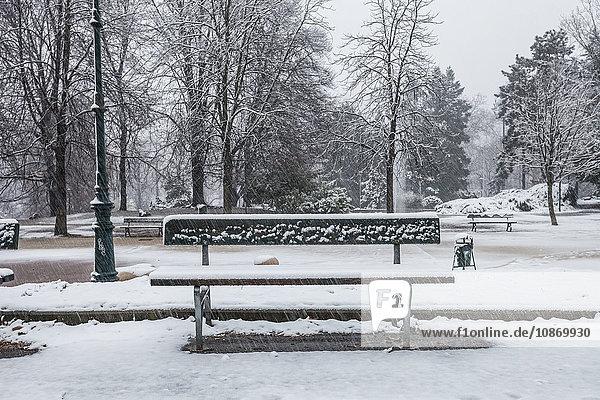 Parkbank in einem schneebedeckten Park