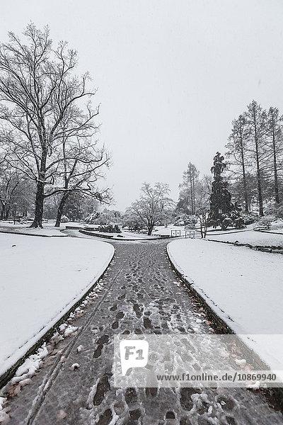 Abnehmende Perspektive des schneebedeckten Weges