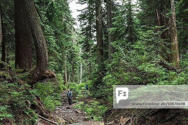 Ehepaar im Wald  Hundeberg  Britisch-Kolumbien  Kanada