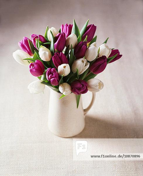 White and purple tulip flower arrangement in jug