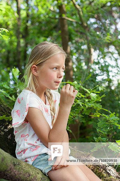 Mädchen sitzt auf einem Ast und kaut Gras Mädchen sitzt auf einem Ast und kaut Gras