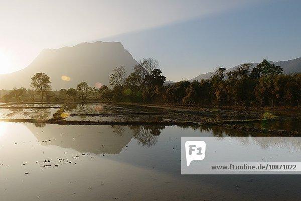 Nordthailand,  Reisfeld und Karstlandschaft,  Chiang Dao,  Thailand