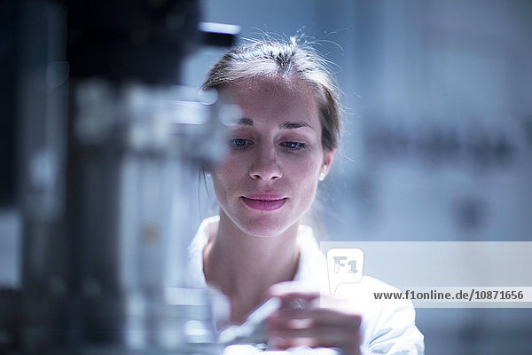 Scientist working with SEM microscope
